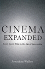 Cinema expanded